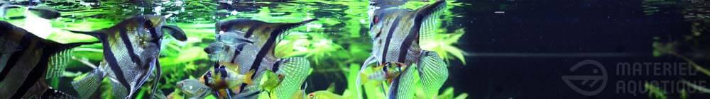 Bannière nourriture de qualité pour poissons d'aquarium chez www.materiel-aquatique.com
