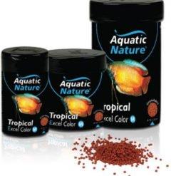 aquatic nature tropical excel color pour ravier les couleurs des grands poissons tropicaux