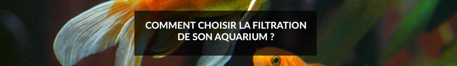 Bannière article comment choisir sa filtration d'aquarium.