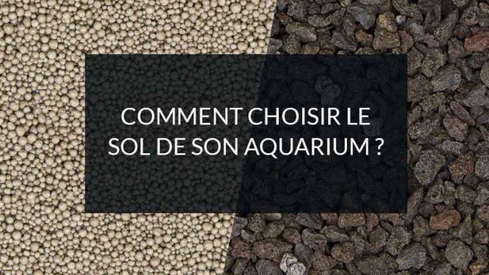comment choisir le sol de son aquarium