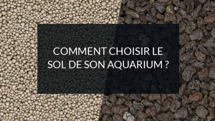 comment choisir le sol de son aquarium