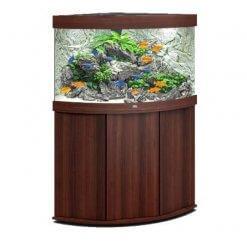 aquarium Juwel Trigon 190 Led avec meuble bois brun