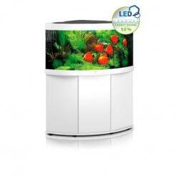 aquarium juwel trigon 350 litres avec meuble blanc