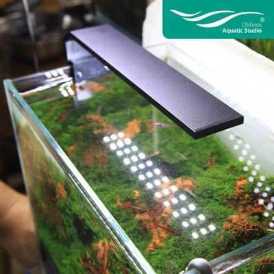 Chihiros Serie C lampe led eclairage pour aquarium démonstration