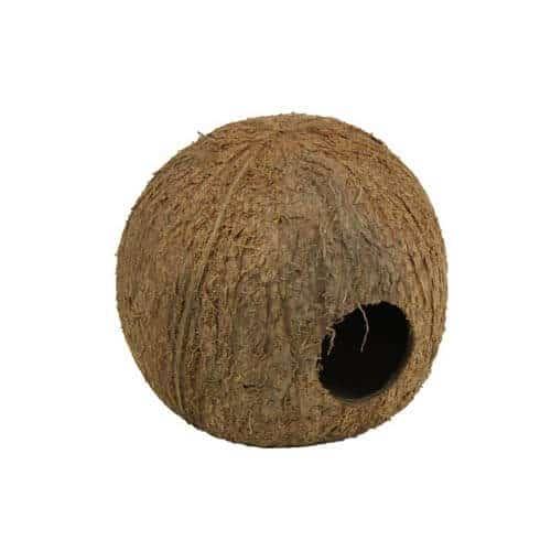 Cocos cava 3/4 JBL grotte de ponte en noix de coco