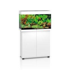 Juwel Rio 125 led blanc aquarium