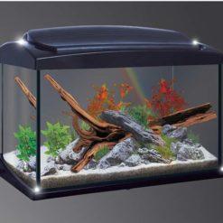 aquarium newa hobby noir de 20 litres