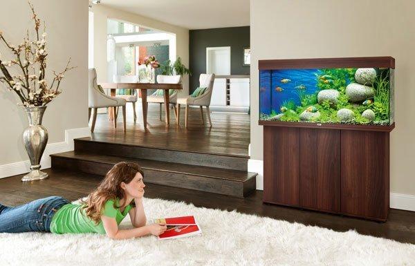 Juwel Rio 180 bois brun avec meuble aquarium 180l en situation