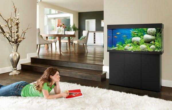 Juwel Rio 180 Noir led avec meuble aquarium 180l en situation