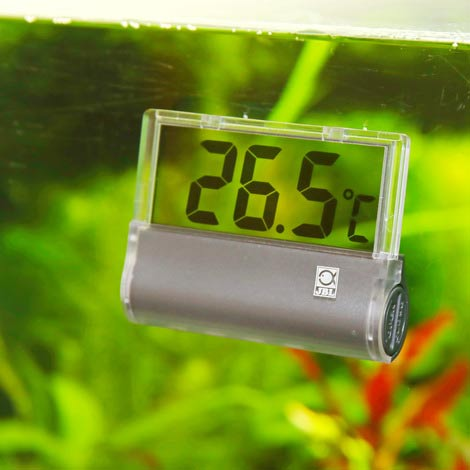 jbl digiscan thermomètre digital pour vitre d'aquarium
