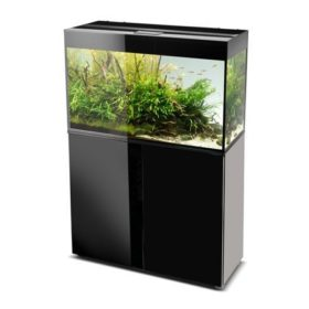 aquarium aquael glossy 80 noir 125 litres