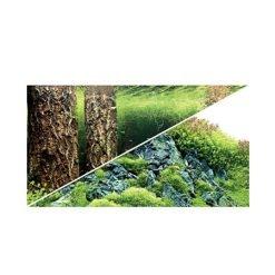 poster de fond pour aquarium scpaer's hill / forest