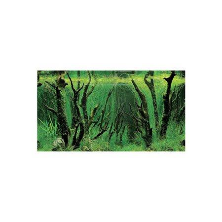 poster de fond d'aquarium avec décors canyon et fôret