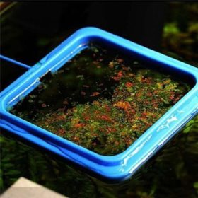 anneau de nourrisage pour aquarium