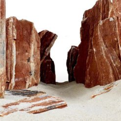 fossilized wood / wood stone