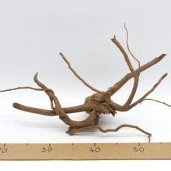 Racine Asia décor aquarium racine araignée spiderwood