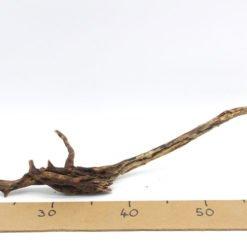 Racine Mini Root racine pour aquarium décoration aquarium