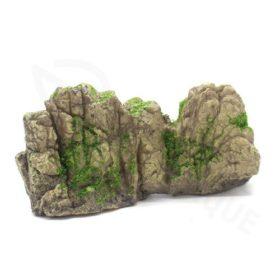 pierre avec mousse
