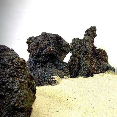 pierre de lace roche aquarium