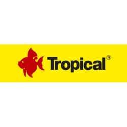 tropical aquarium nourriture poisson