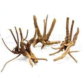 racine mini root