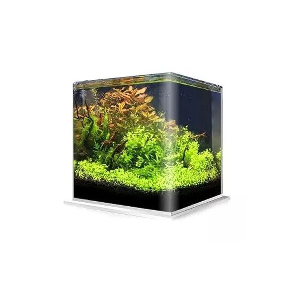 Amtra nanotank 20 aquarium bord arrondi