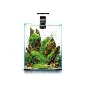 Aquael Shrimp Set Day&Night 20 aquarium