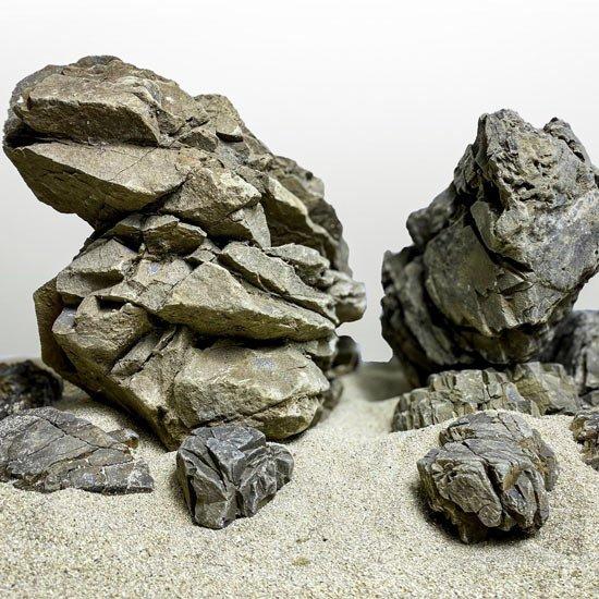 elderly stone pierre aquarium