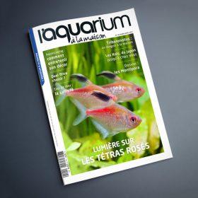 magazine aquarium a la maison 144