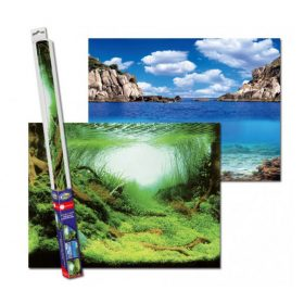 Aqua Nova Poster de fond Plante/Océan 150x60 cm