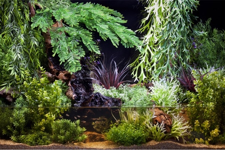 decorations-Sydeco-plante-artificielle